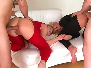 Milf amateur group cocksucking in bar